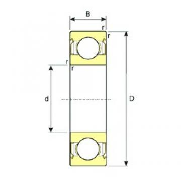 25 mm x 62 mm x 17 mm  ISB 6305-ZZ deep groove ball bearings