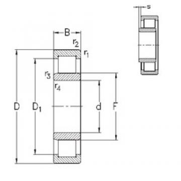 50 mm x 110 mm x 40 mm  NKE NU2310-E-TVP3 cylindrical roller bearings