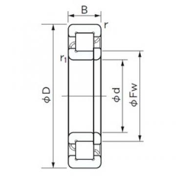 50 mm x 110 mm x 40 mm  NACHI NUP 2310 E cylindrical roller bearings