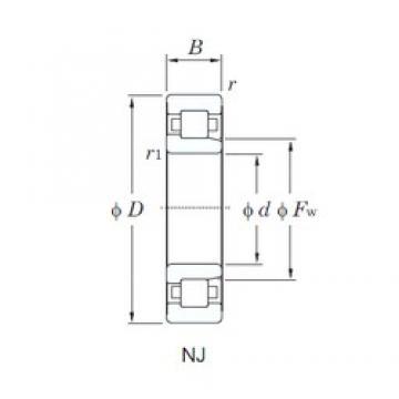 50 mm x 110 mm x 40 mm  KOYO NJ2310 cylindrical roller bearings
