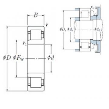 30 mm x 62 mm x 16 mm  NSK NJ 206 EW cylindrical roller bearings