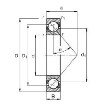 25 mm x 62 mm x 17 mm  FAG 7305-B-TVP angular contact ball bearings
