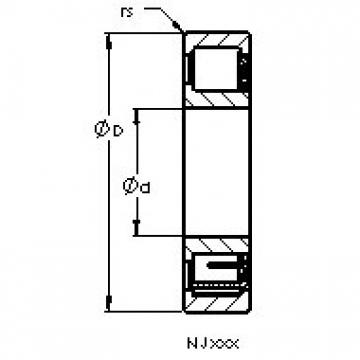 AST NJ206 EM6 cylindrical roller bearings