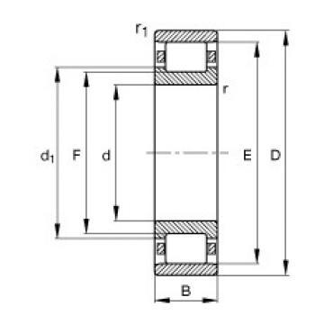 30 mm x 62 mm x 16 mm  FAG N206-E-TVP2 cylindrical roller bearings