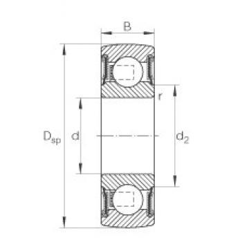 INA 205-NPP-B deep groove ball bearings