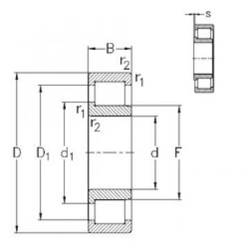 50 mm x 110 mm x 40 mm  NKE NJ2310-VH cylindrical roller bearings