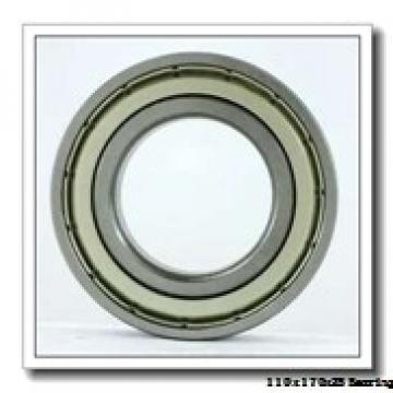110 mm x 170 mm x 28 mm  NSK 7022CTRSU angular contact ball bearings